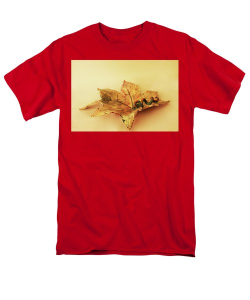 Leaf Plate1 Men's T-Shirt  (Regular Fit) by Itzhak Richter