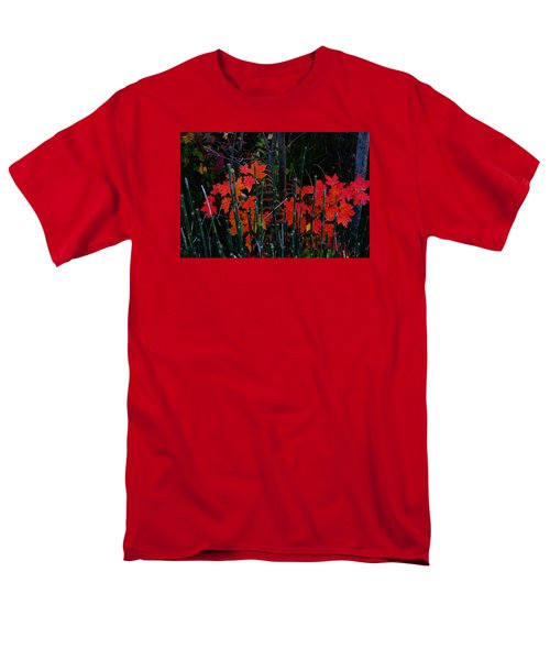 Men's T-Shirt  (Regular Fit) featuring the photograph Autumn by Steven Clipperton