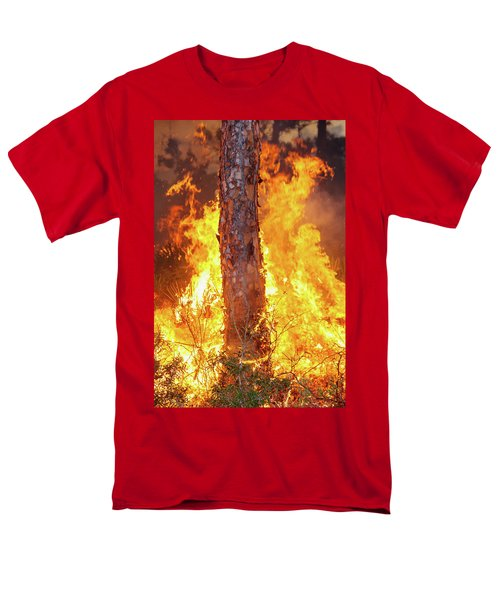 Blazing Pine Men's T-Shirt  (Regular Fit) by Arthur Dodd