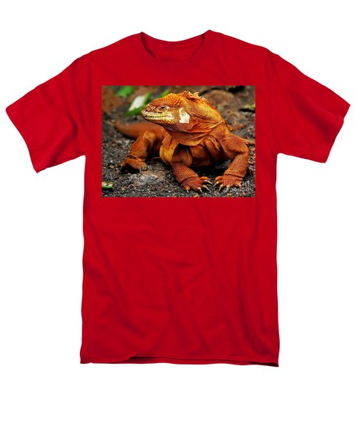 Galapagos Iguana Men's T-Shirt  (Regular Fit) by Rod Jellison
