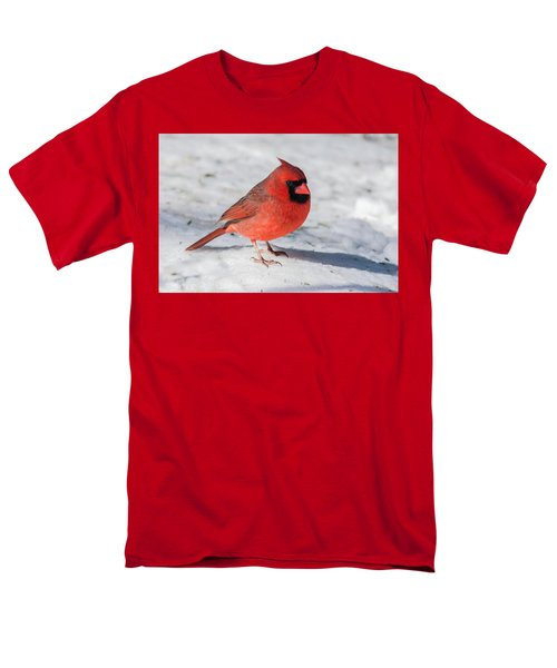 Male Cardinal In Winter Men's T-Shirt  (Regular Fit) by Kenneth Cole