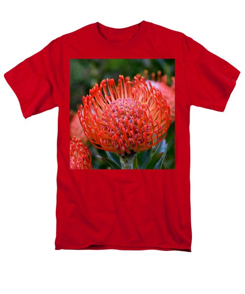 Red  Pincushion Protea Men's T-Shirt  (Regular Fit) by Werner Lehmann
