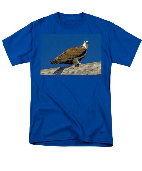Osprey With Fish In Talons Men's T-Shirt  (Regular Fit) by Dale Powell
