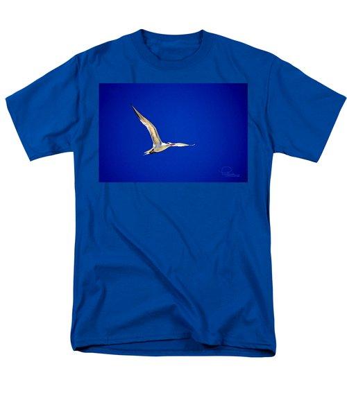 Royal Tern 2 Men's T-Shirt  (Regular Fit) by Ludwig Keck