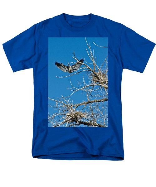 Time To Nest Men's T-Shirt  (Regular Fit) by Colleen Coccia