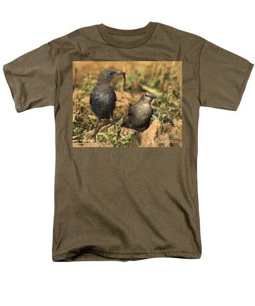 Starling Estornino Men's T-Shirt  (Regular Fit) by Guido Montanes Castillo