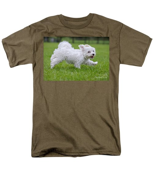 110801p130 Men's T-Shirt  (Regular Fit) by Arterra Picture Library