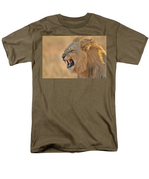 120118p081 Men's T-Shirt  (Regular Fit) by Arterra Picture Library
