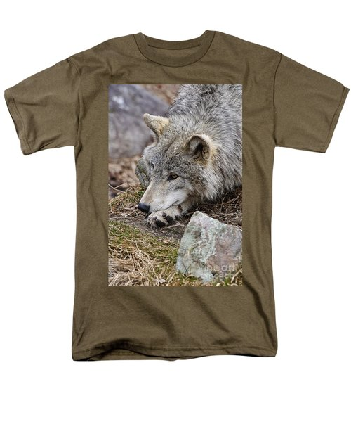 Timber Wolf Men's T-Shirt  (Regular Fit) by Wolves Only