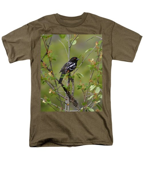 Spotted Towhee Men's T-Shirt  (Regular Fit) by Ben Upham III