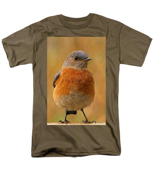 Bluebird Men's T-Shirt  (Regular Fit) by Jean Noren