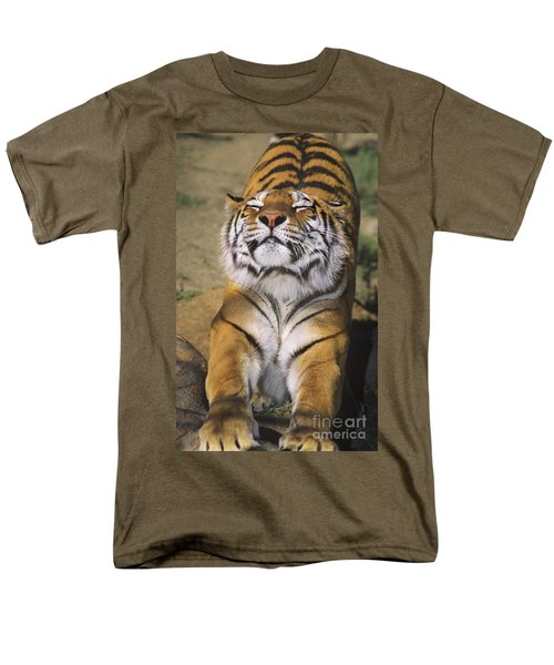 A Tough Day Siberian Tiger Endangered Species Wildlife Rescue Men's T-Shirt  (Regular Fit) by Dave Welling
