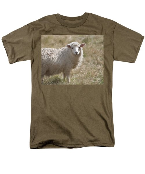 Adorable Sheep Men's T-Shirt  (Regular Fit) by Loriannah Hespe