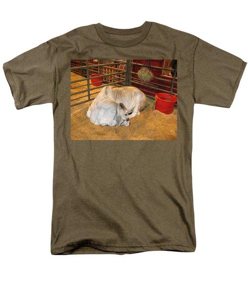 American Brahman Heifer Men's T-Shirt  (Regular Fit) by Connie Fox