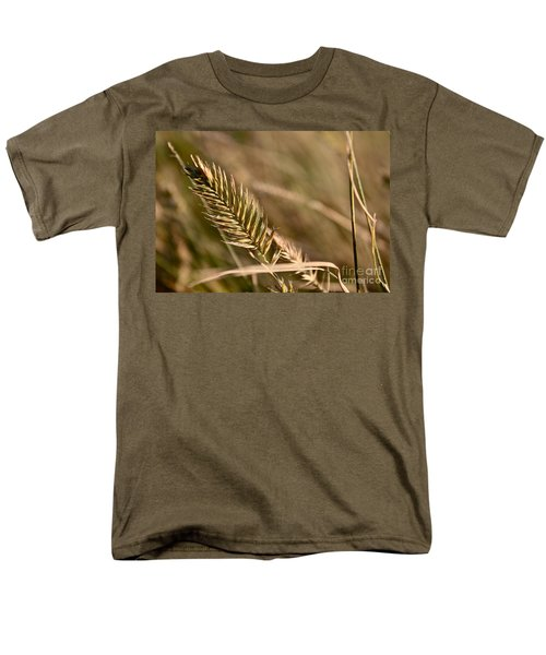 Autumn Grasses Men's T-Shirt  (Regular Fit) by Linda Bianic