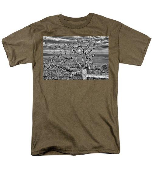Bare Tree In Hana Men's T-Shirt  (Regular Fit)