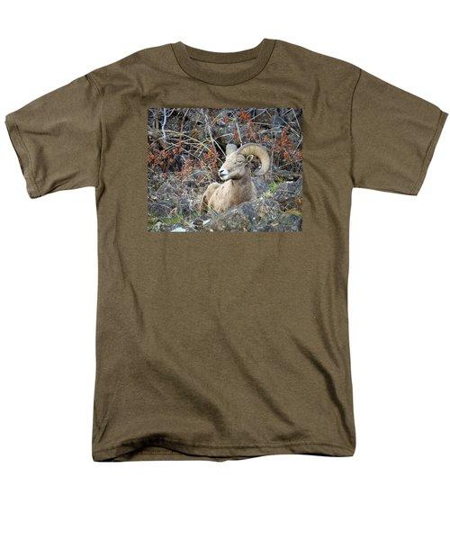 Men's T-Shirt  (Regular Fit) featuring the photograph Bedded Bighorn by Steve McKinzie