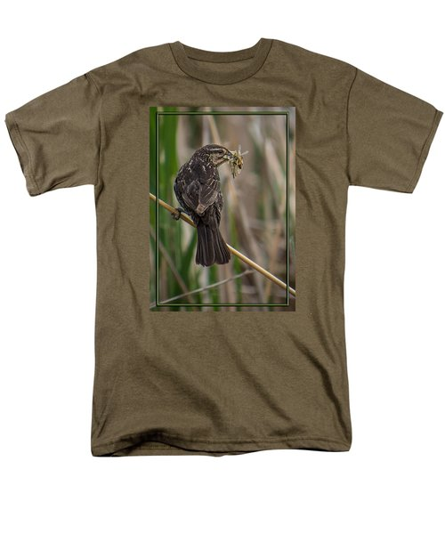 Men's T-Shirt  (Regular Fit) featuring the photograph Big Dinner For Female Red Winged Blackbird II by Patti Deters