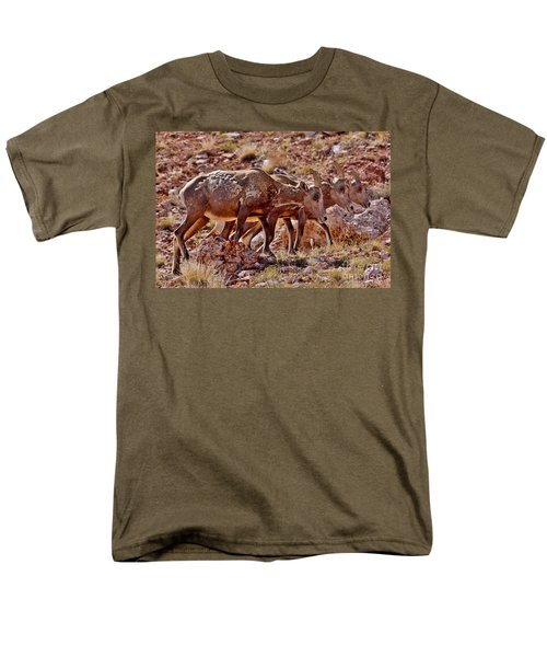 Men's T-Shirt  (Regular Fit) featuring the photograph Bighorn Canyon Sheep Trio by Janice Rae Pariza