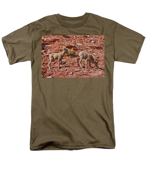 Men's T-Shirt  (Regular Fit) featuring the photograph Bighorn Canyon Sheep Wyoming by Janice Rae Pariza