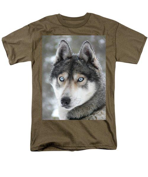 Blue Eyes Husky Dog Men's T-Shirt  (Regular Fit)