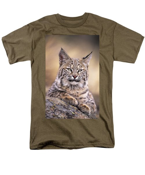 Bobcat Cub Portrait Montana Wildlife Men's T-Shirt  (Regular Fit) by Dave Welling
