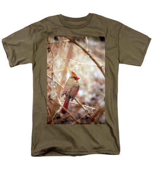 Cardinal Birds Female Men's T-Shirt  (Regular Fit) by Peggy Franz