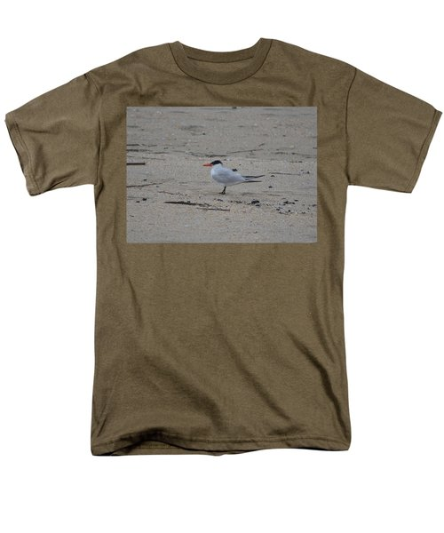 Men's T-Shirt  (Regular Fit) featuring the photograph Caspian Tern by James Petersen