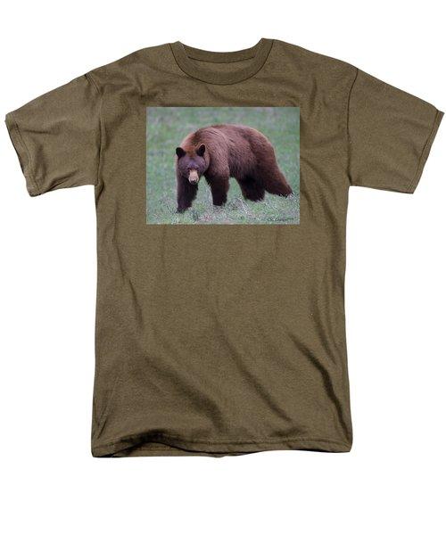Cinnamon Black Bear Men's T-Shirt  (Regular Fit) by CR  Courson