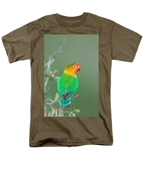 Close-up Of A Fischers Lovebird Men's T-Shirt  (Regular Fit) by Panoramic Images