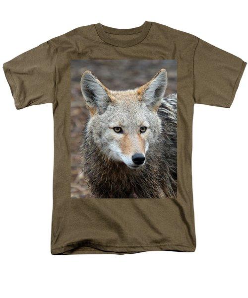 Coyote Men's T-Shirt  (Regular Fit) by Athena Mckinzie