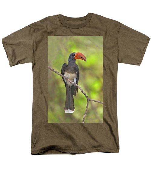 Crowned Hornbill Perching On A Branch Men's T-Shirt  (Regular Fit) by Panoramic Images