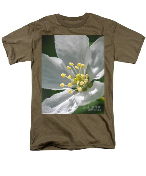 Delcate Widflower With Beautiful Stamen Men's T-Shirt  (Regular Fit) by David Perry Lawrence