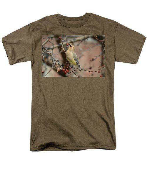 Cedar Waxwing In Winter Men's T-Shirt  (Regular Fit) by James Petersen