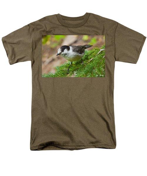 Gray Jay On Fir Tree Men's T-Shirt  (Regular Fit) by Jeff Goulden