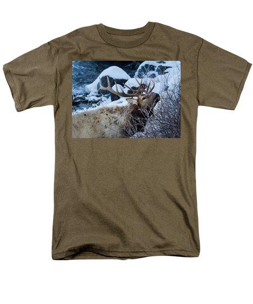 Grazing Elk Men's T-Shirt  (Regular Fit)