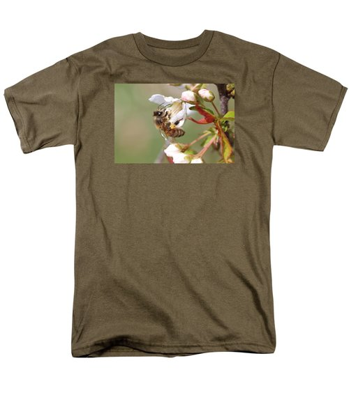 Honeybee On Cherry Blossom Men's T-Shirt  (Regular Fit) by Lucinda VanVleck