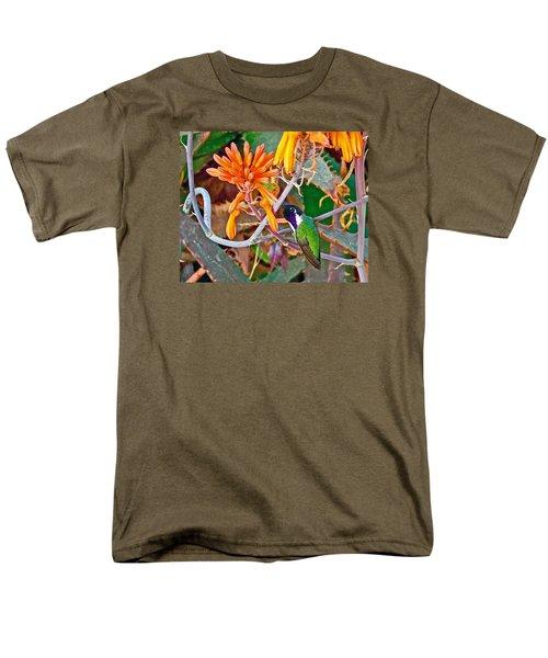 Hummingbird On Aloe In Living Desert In Palm Desert-california Men's T-Shirt  (Regular Fit) by Ruth Hager
