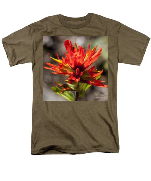 Men's T-Shirt  (Regular Fit) featuring the photograph Indian Paintbrush by Belinda Greb