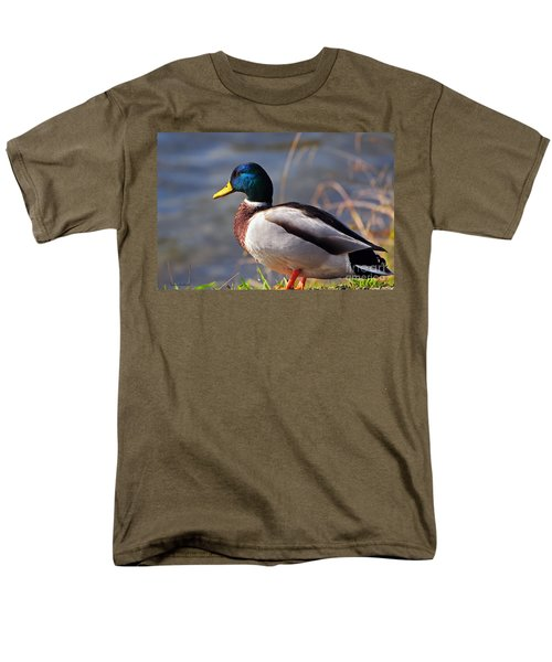 Male Mallard Duck Men's T-Shirt  (Regular Fit) by Susan Wiedmann