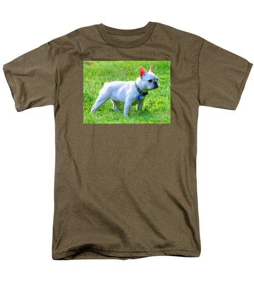 Ms. Quiggly - French Bulldog Men's T-Shirt  (Regular Fit)