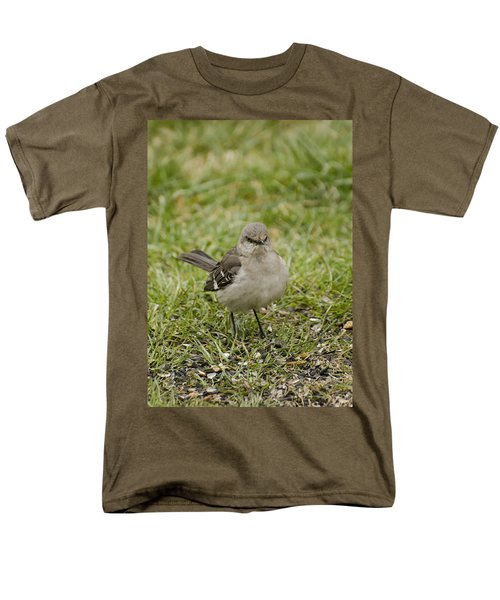 Northern Mockingbird Men's T-Shirt  (Regular Fit) by Heather Applegate
