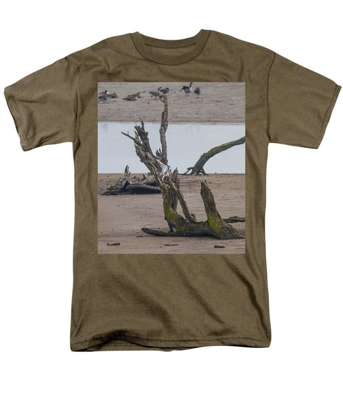 Ospray With Fish Men's T-Shirt  (Regular Fit) by Brian Williamson