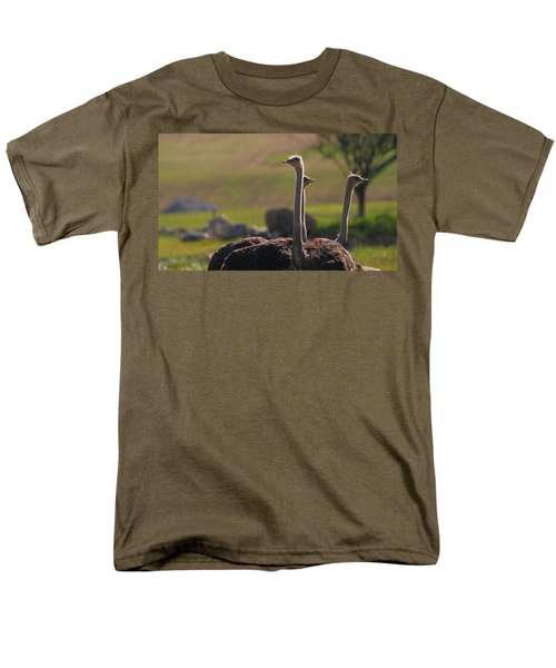 Ostriches Men's T-Shirt  (Regular Fit) by Dan Sproul