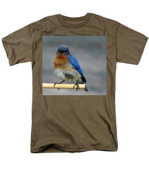 Our Own Mad Bluebird Men's T-Shirt  (Regular Fit) by Betty Pieper
