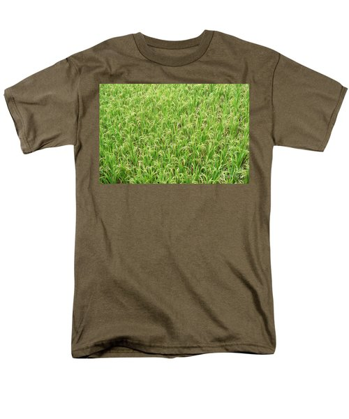 Paddy Field Men's T-Shirt  (Regular Fit) by Yew Kwang