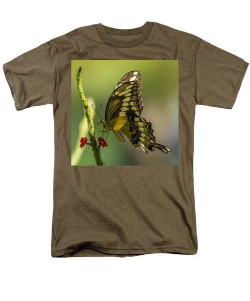 Men's T-Shirt  (Regular Fit) featuring the photograph Palamedes Swallowtail by Jane Luxton
