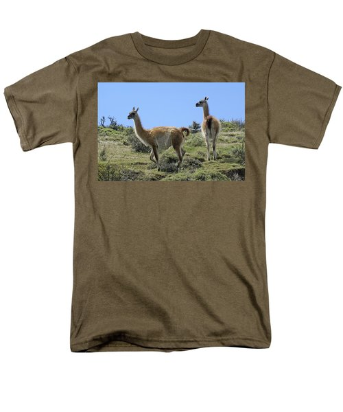 Patagonian Guanacos Men's T-Shirt  (Regular Fit) by Michele Burgess