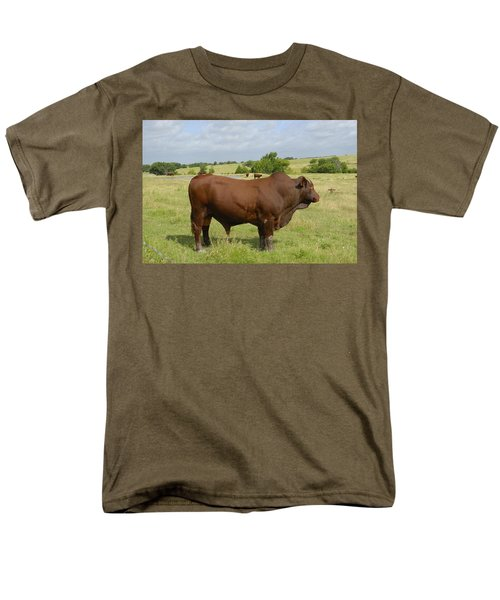 Red Angus Bull Men's T-Shirt  (Regular Fit) by Charles Beeler
