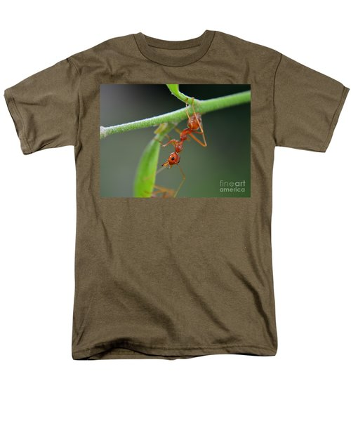 Red Ant Men's T-Shirt  (Regular Fit) by Michelle Meenawong